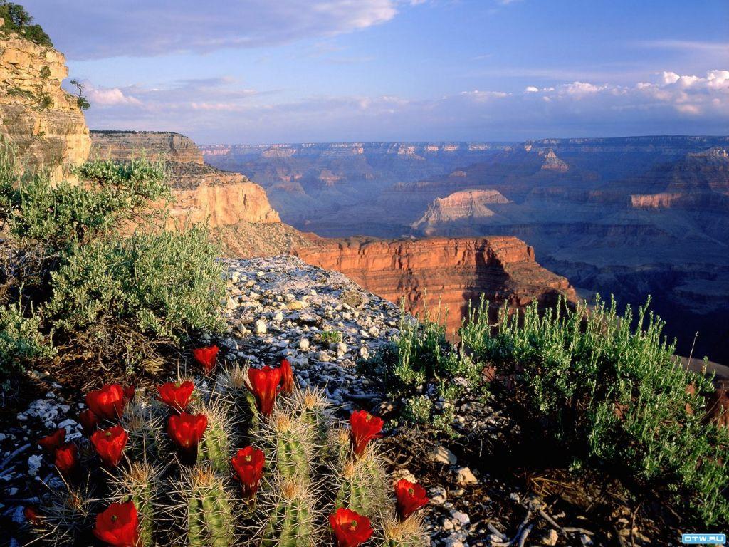 Общенациональный парк Гранд-Каньон